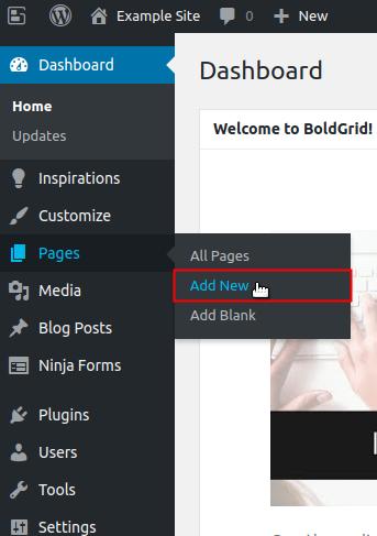 Añadir Página Ninja Forms